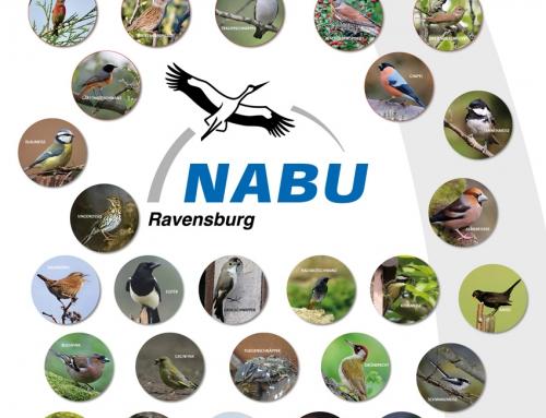 Plakatgestaltung NABU Ravensburg