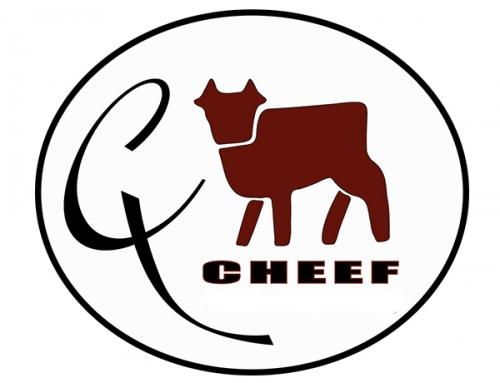 Logo Gestaltung für CHEEF GRILL EVENTS & CATERING in Kressbronn